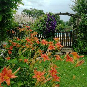 pretty gite garden civray
